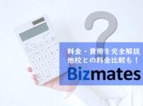 bizmates costs