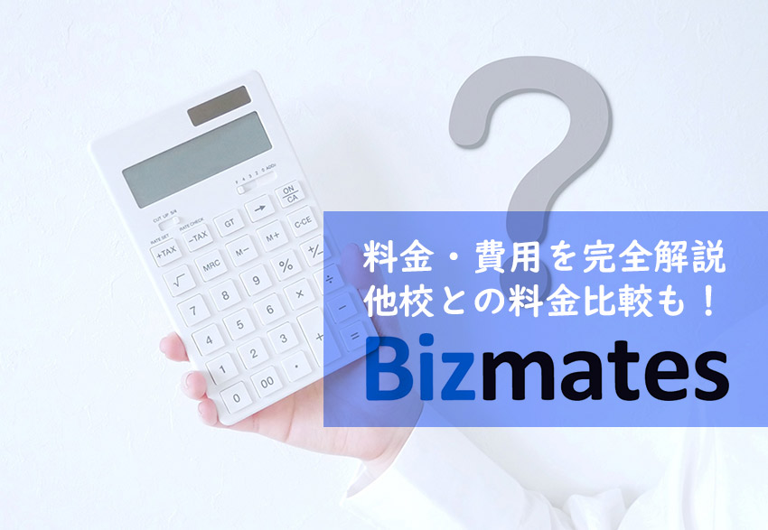 bizmates costs